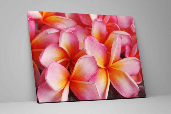 Tablou Tropical Flowers